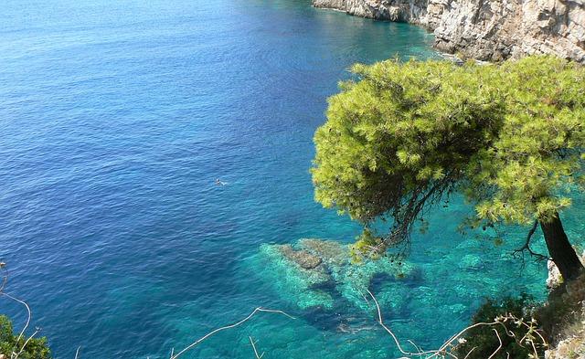 Schwimmen in der Adria bei Cervia