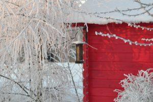 Den Garten sicher durch den Winter bringen